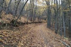 Пътека във Витоша