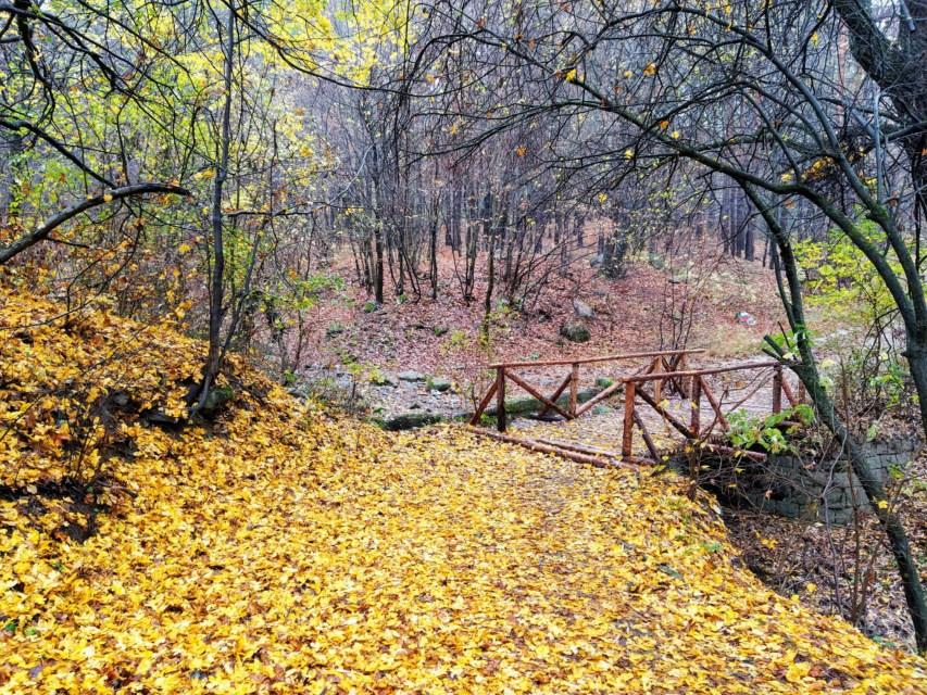 Мостчето от Княжево нагоре. Снимка: ToGood Photos