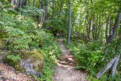 Пътеката до Боянския водопад. Снимка: ToGood Photos
