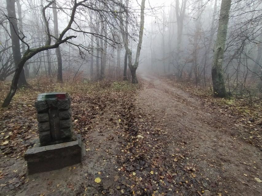 Чешмичка по пътечката Княжево - Златните мостове